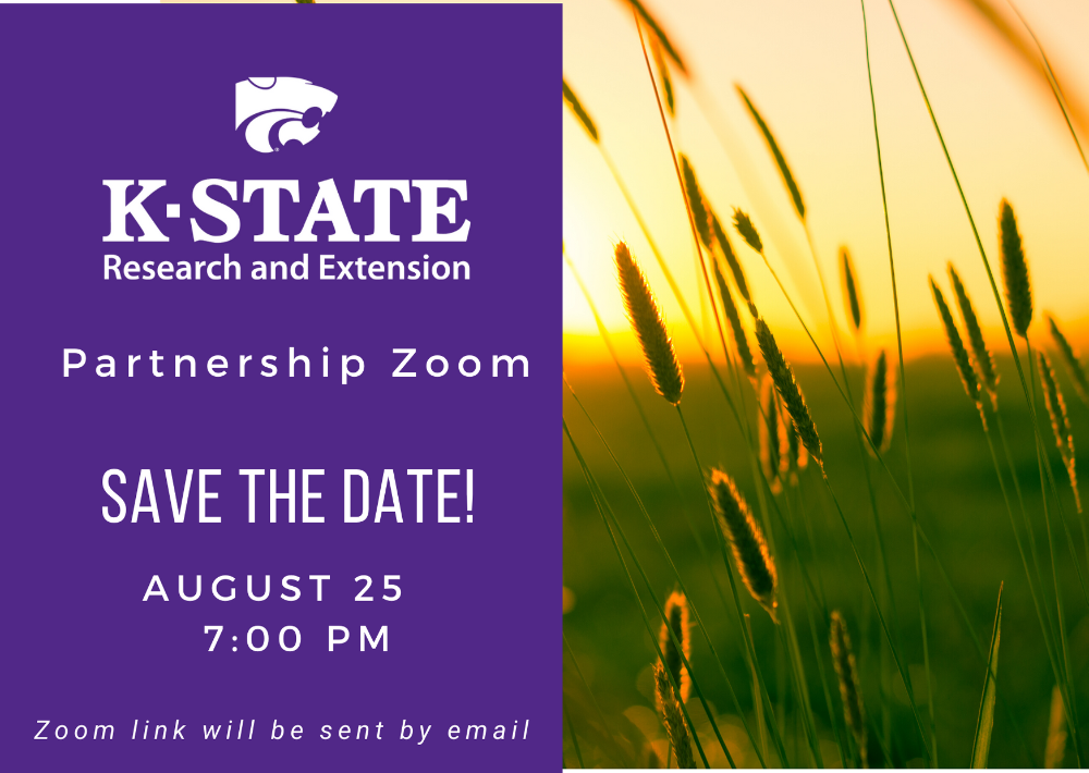 Save the Date: Partnership Zoom on August 25 at 7:00 PM