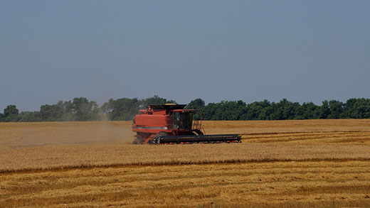 Combine in field, farm stress and mental health