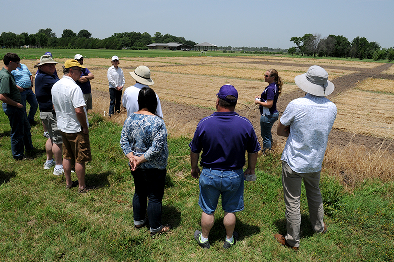 K-State Research and Extension professionals tour the grounds of the John C. Pair Horticultural Center in this file photo