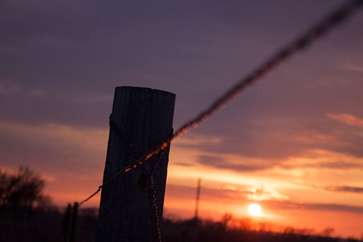 Fencepost with barbed wire at sunset