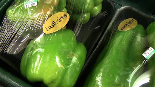 Locally grown green peppers at farmers market