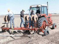 Plowing in dripline in 1990