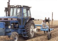 Plowing in dripline 1999