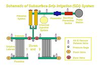 Schematic of a basic subsurface drip irrigation (SDI) system